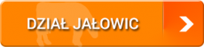 Dział Jałowic